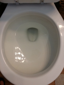 Ta-Da! No more ring around the toilet! First time in forever!!!